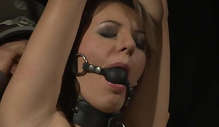 Wondrous european cougar limited and boinked